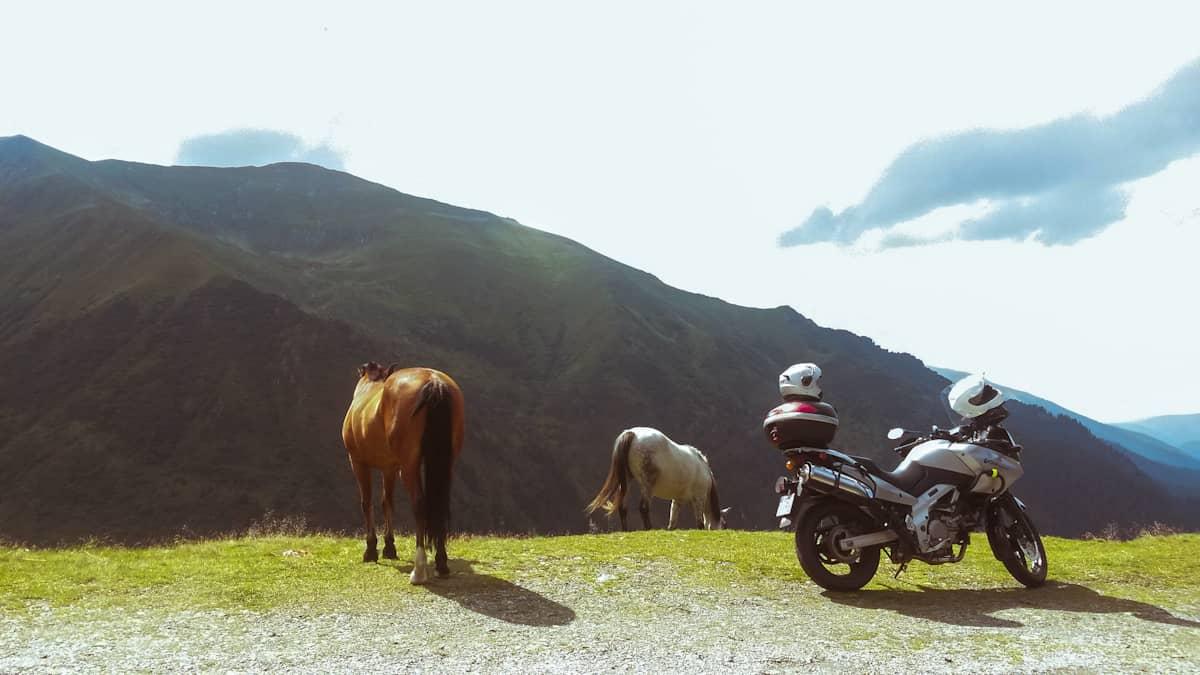 Viaggio in auto in Romania, vademecum del perfetto guidatore