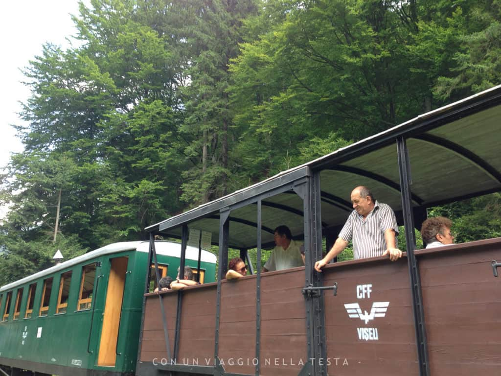 mocanita treno vapore romania-8