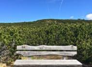 Freedom Trail, alla scoperta di Boston lungo il sentiero della Libertà