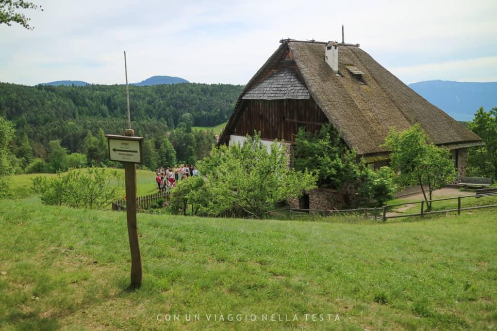 Il Museo dell'Apicoltura Plattern è in una posizioone privilegiata, in cima a una collina erbosa