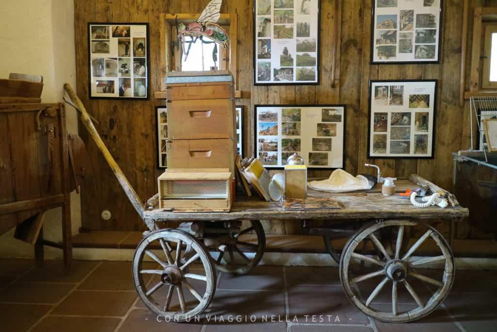 interno museo apicoltura plattner
