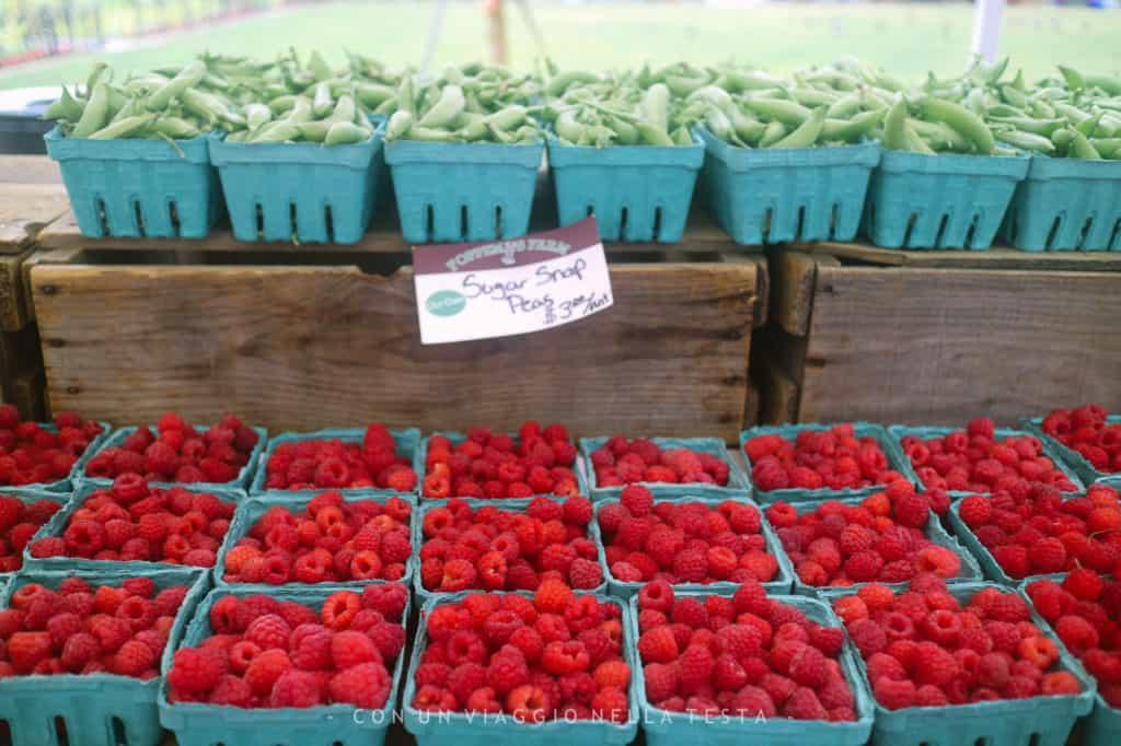 Copley Square Farmers Market