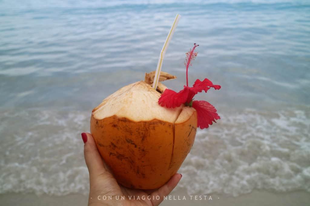 organizzare un viaggio alle Seychelles cocco
