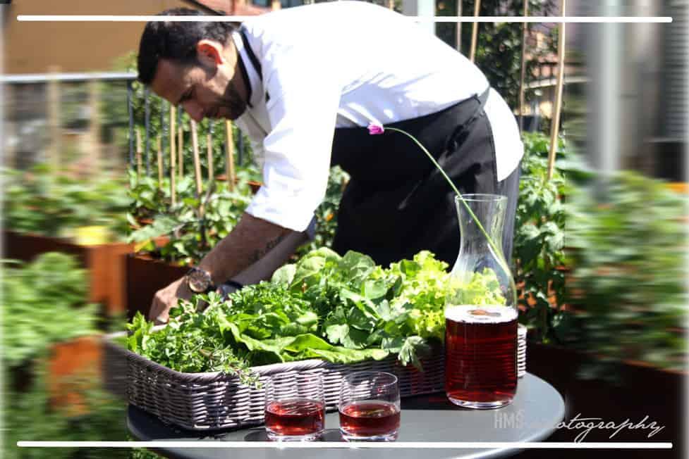 L'orto all'ultimo piano dell'Hotel Milano Scala: armoni e verdure a chilometro zero.