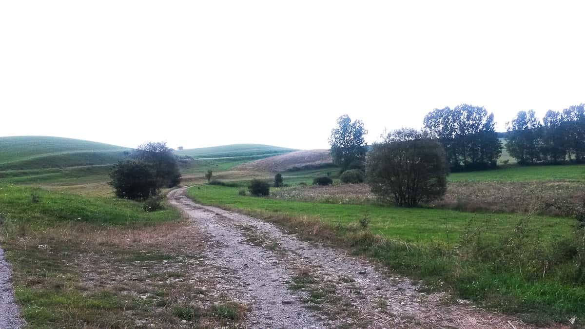 romania da non perdere, la strada verso Viscri