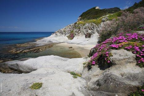 isola d'elba capo sant'andrea