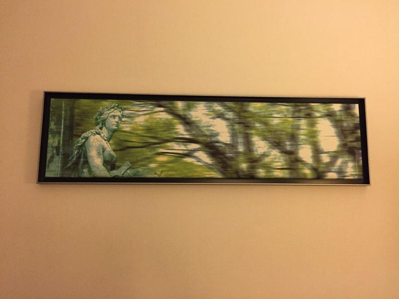 Uno dei quadri dell'albergo, rielaborazioni di frammenti fotografici del parco.