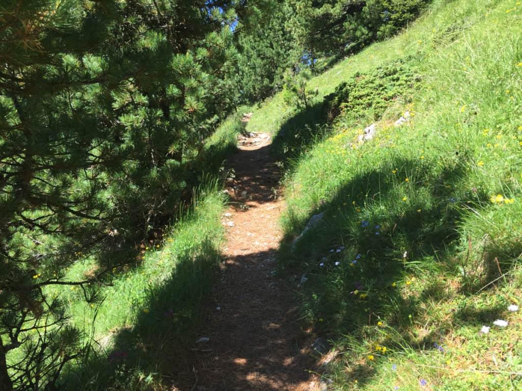 latemar escursioni sentiero