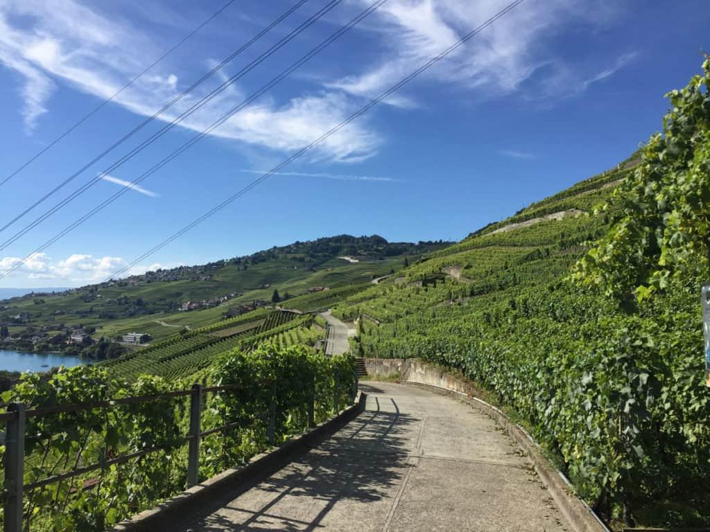 La strada che percorre il Lavaux Express