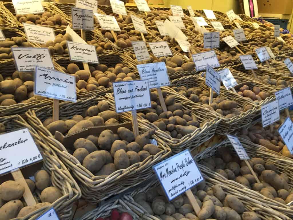regole di viaggio patate
