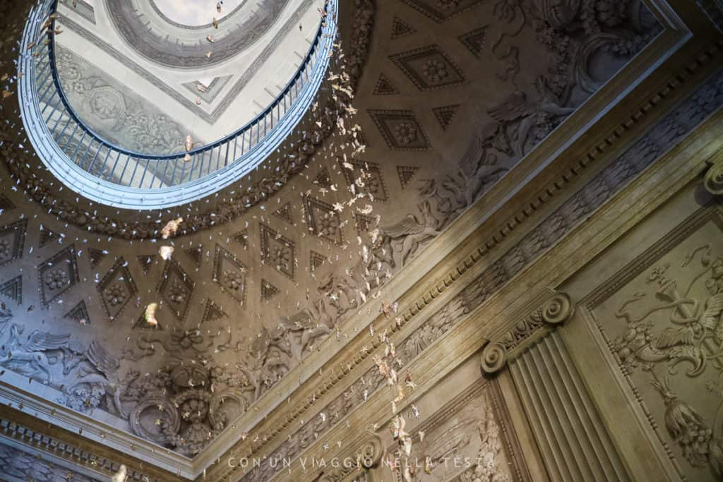 Museo della Musica a Bologna