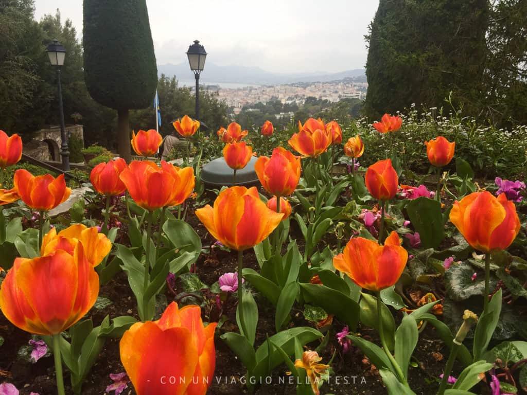 Un dettaglio del giardino di Villa Domergue