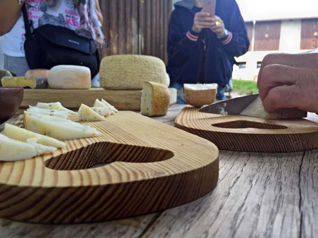 visita maso degustazione formaggi