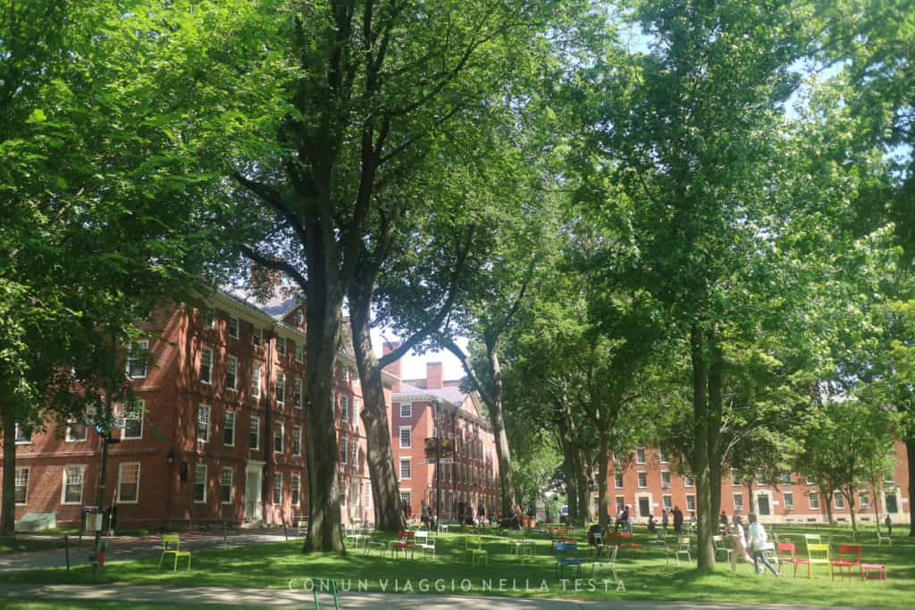cosa vedere a boston: harvard Boston