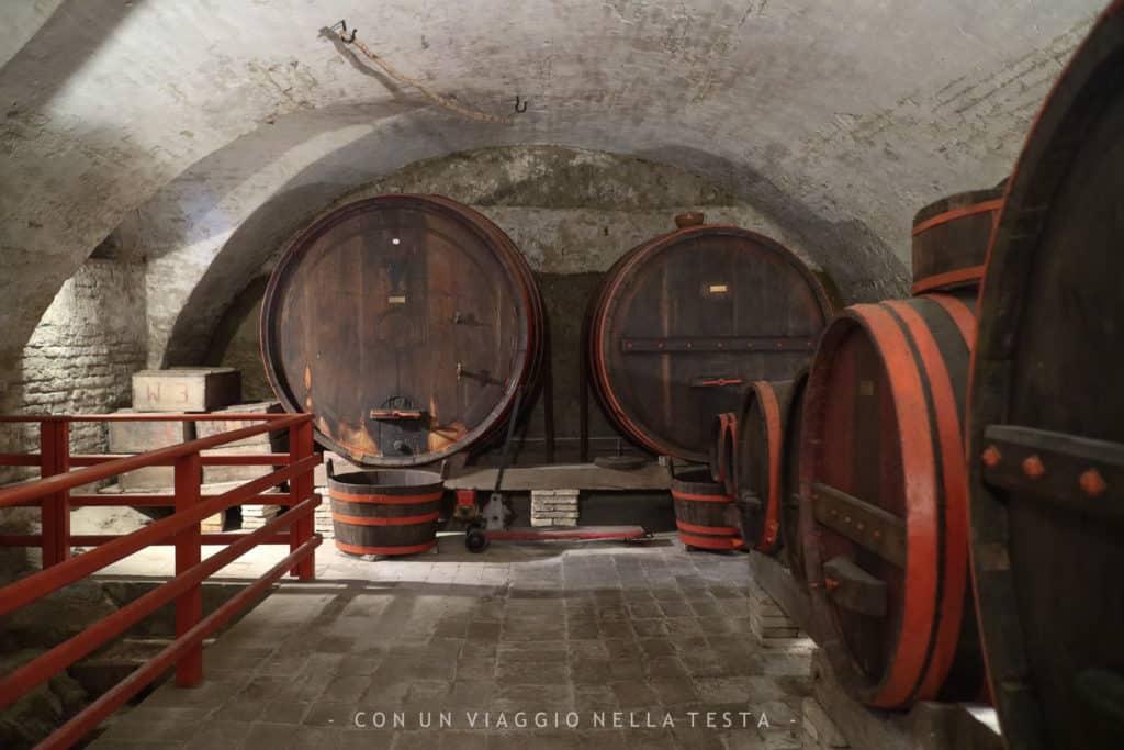 Museo di Storia della Mezzadria Senigallia cantine