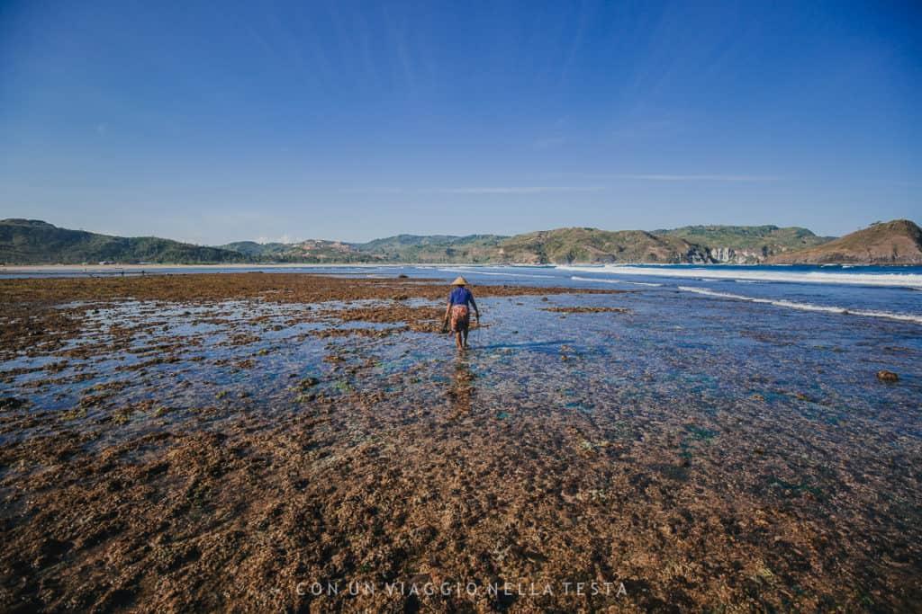 spiagge lombok pescatori