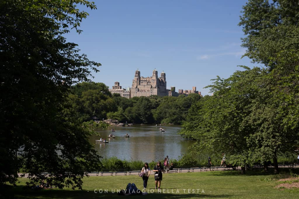 cose da fare a new york in estate central park