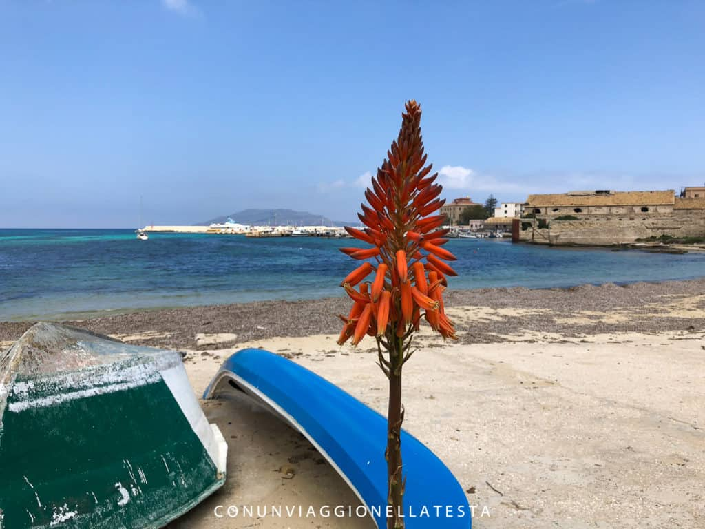 Vacanze a Favignana