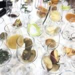 Asti DOCG, 7 cose che (forse) non sai sul vino e il territorio