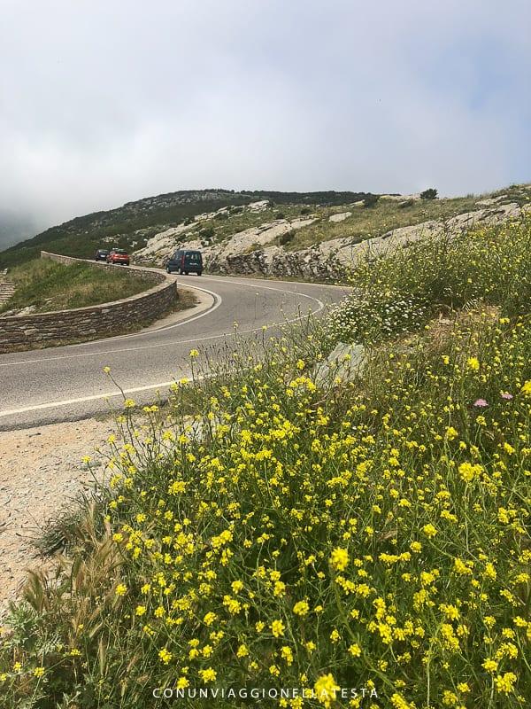 corsica on the road col de teghime