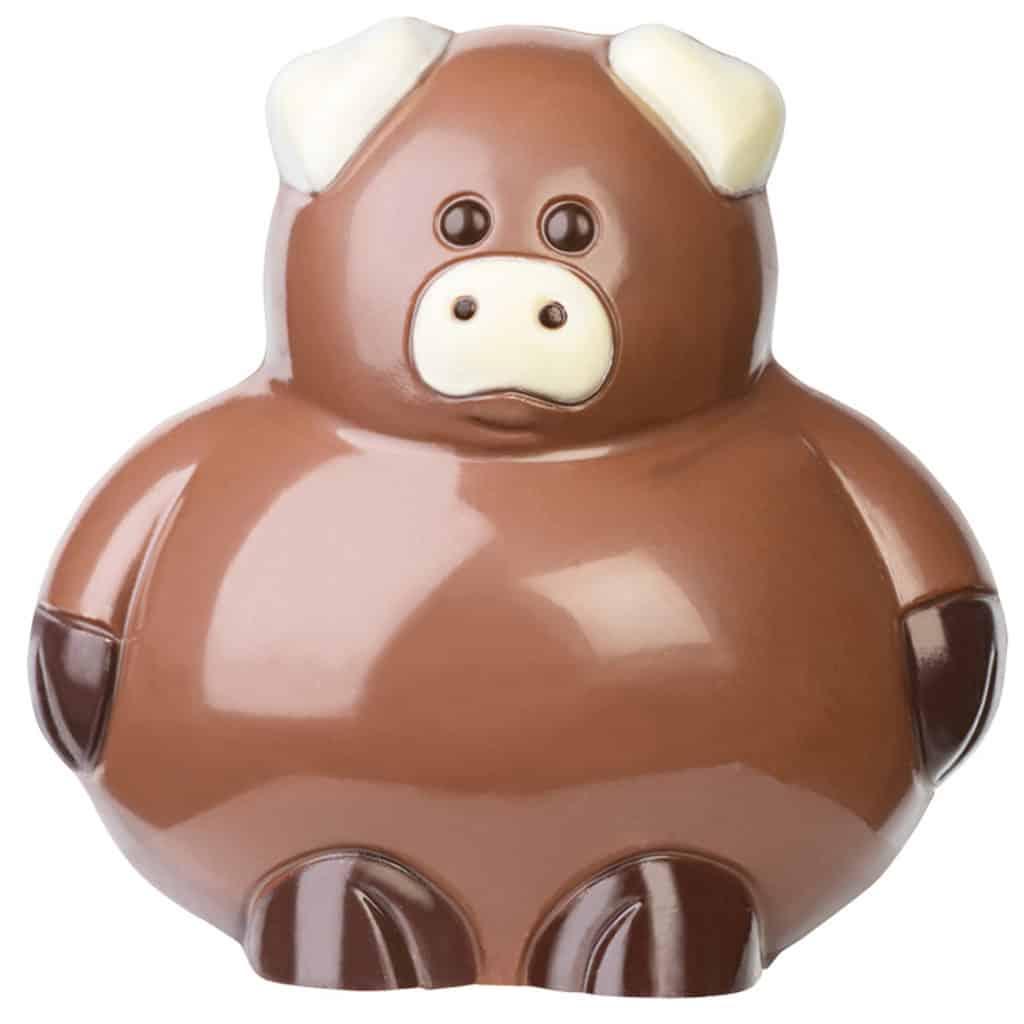 animaletto di cioccolato pasqua bodrato