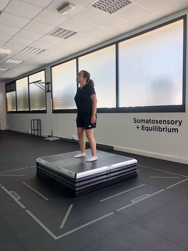 metodo-ants-equilibrio-test