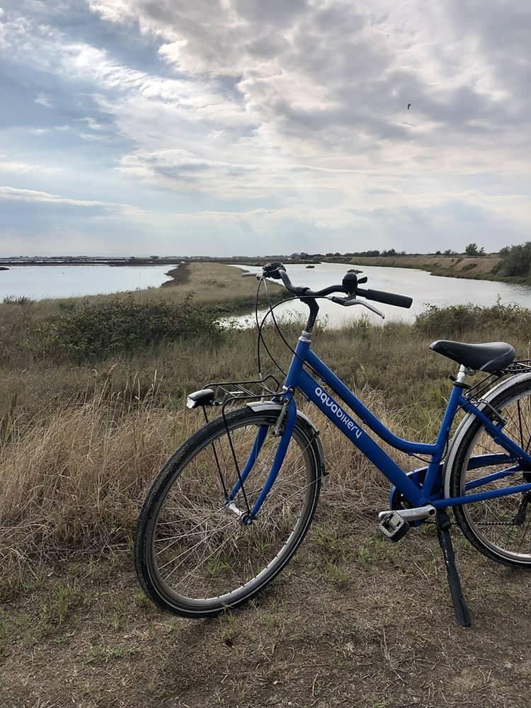 noleggio-bici-saloine-di-comacchio